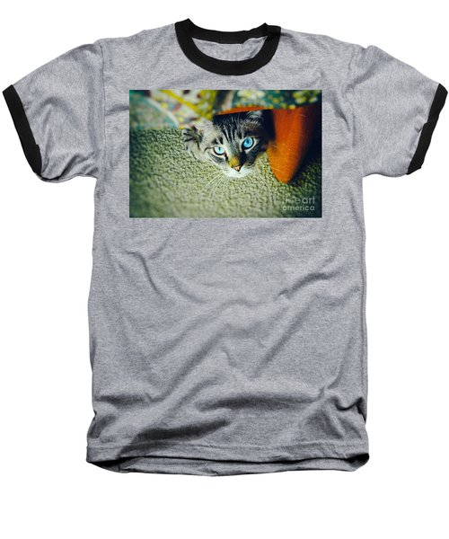 Baseball T-Shirt featuring the photograph Curious Kitty by Silvia Ganora