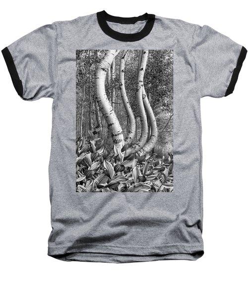 Curved Aspens Baseball T-Shirt