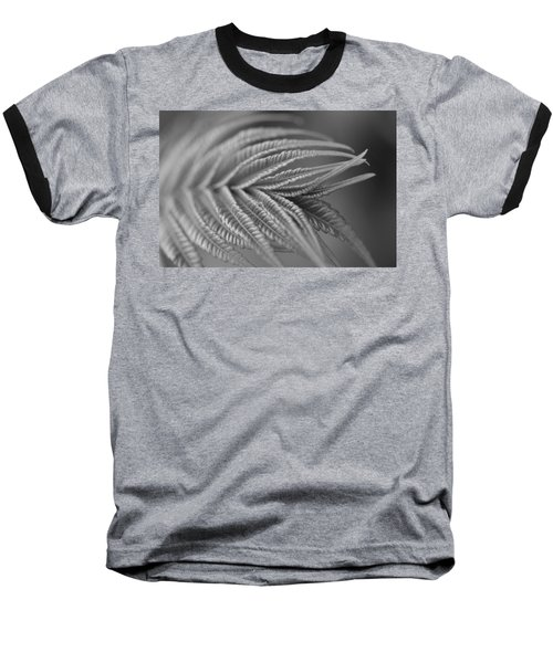 Curved Lines Baseball T-Shirt
