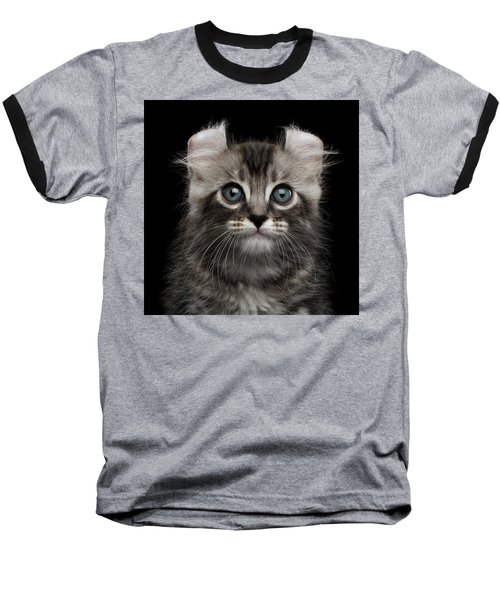 Cute American Curl Kitten With Twisted Ears Isolated Black Background Baseball T-Shirt by Sergey Taran