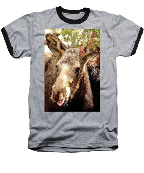Cutie Moose Baseball T-Shirt