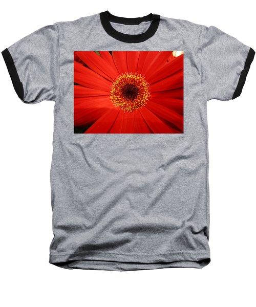 Cutout By Nature Baseball T-Shirt
