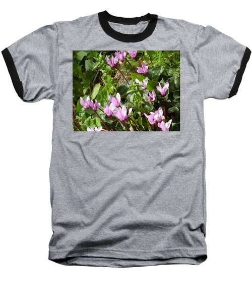 Cyclamen In Spring Baseball T-Shirt by Esther Newman-Cohen