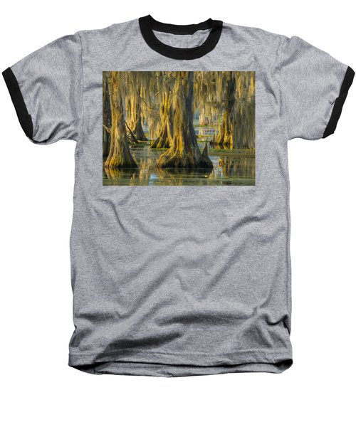 Cypress Canopy Uncovered Baseball T-Shirt by Kimo Fernandez