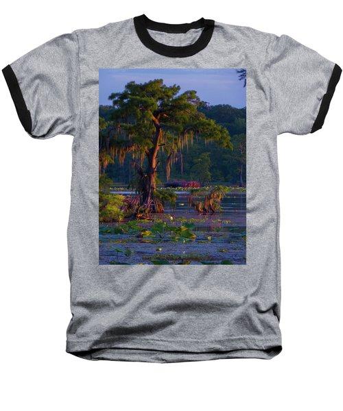 Cypress In The Sunset Baseball T-Shirt by Kimo Fernandez