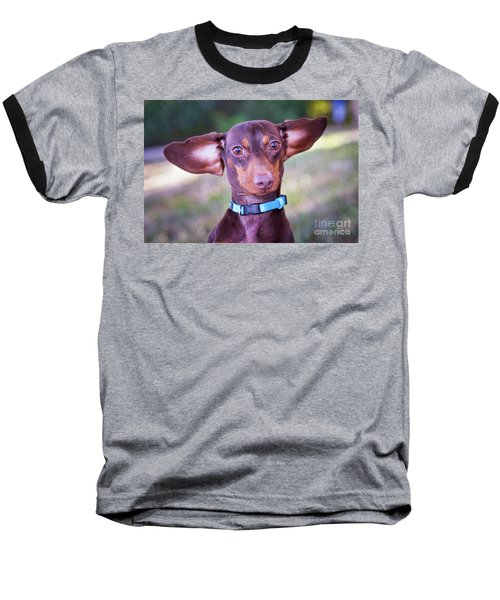 Dachshund Ears Up Baseball T-Shirt