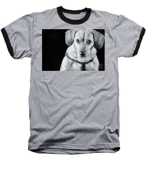 Dachshund Lab Mix Baseball T-Shirt by Stephanie Hayes