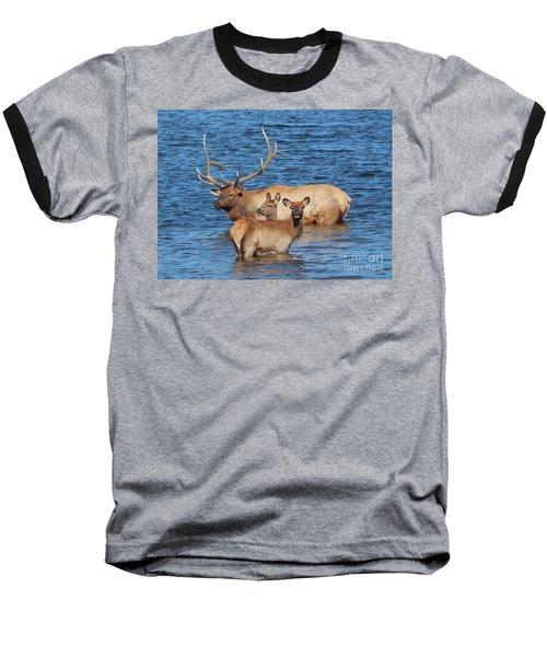 Daddy Daycare Baseball T-Shirt