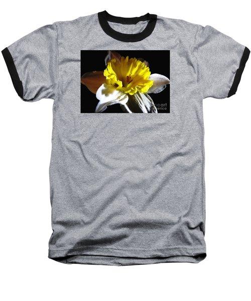 Daffodil 2 Baseball T-Shirt by Rose Santuci-Sofranko