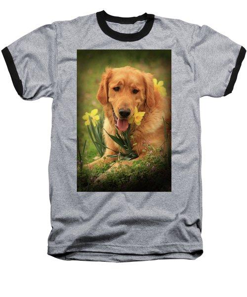 Daffodil Dreams Baseball T-Shirt