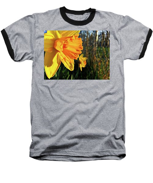 Baseball T-Shirt featuring the photograph Daffodil Evening by Robert Knight