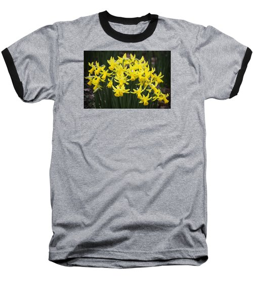 Daffodil Yellow Baseball T-Shirt by Shirley Mitchell
