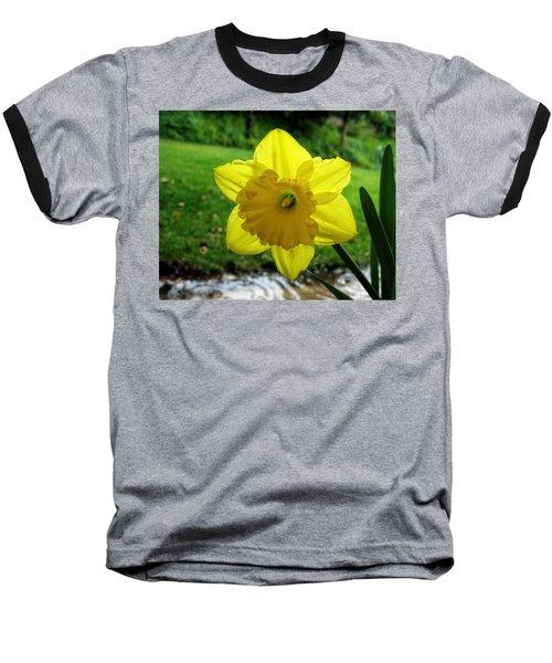 Daffodile In The Rain Baseball T-Shirt
