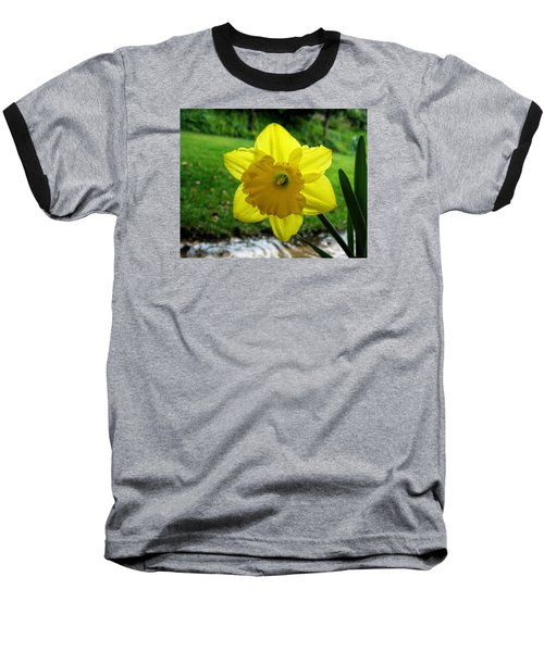 Daffodile In The Rain Baseball T-Shirt