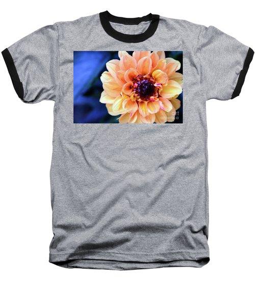 Dahlia Beauty Baseball T-Shirt by Debby Pueschel