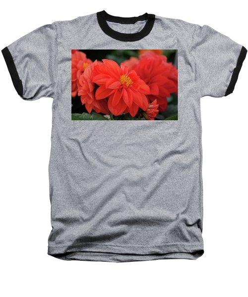 Dahlia Bloomer Baseball T-Shirt