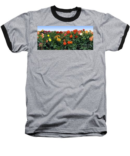 Dahlia Flower Panorama Baseball T-Shirt