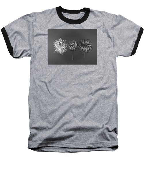 Dahlia Grouping 1 Baseball T-Shirt