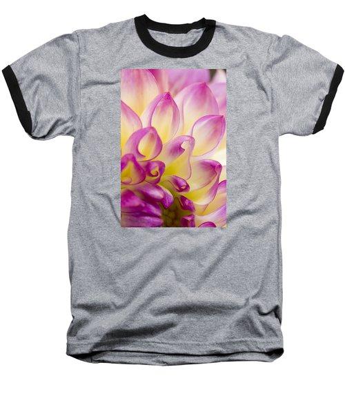 Dahlia Petals 5 Baseball T-Shirt