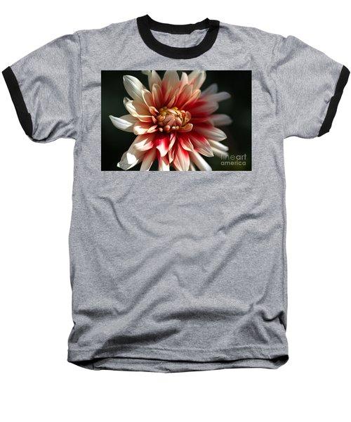 Dahlia Warmth Baseball T-Shirt