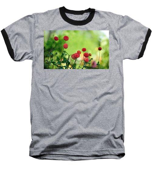 Dahlias Baseball T-Shirt by Diane Giurco