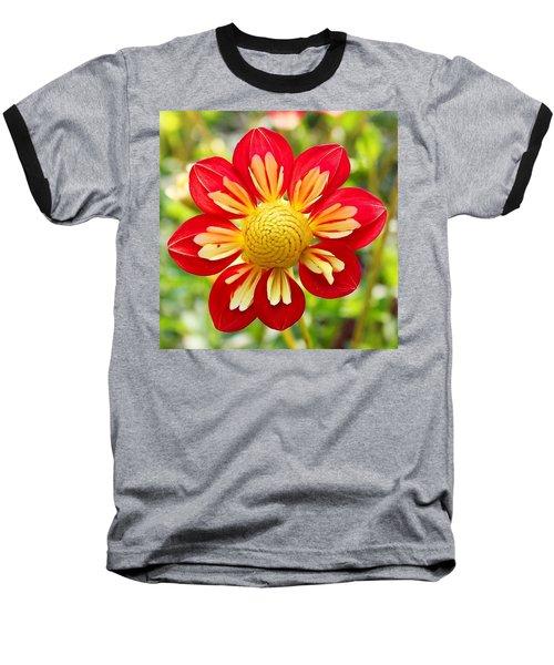 Dainty Dahlia Baseball T-Shirt