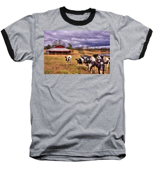 Dairy Heifer Groupies The Red Barn Dairy Farming Art Baseball T-Shirt