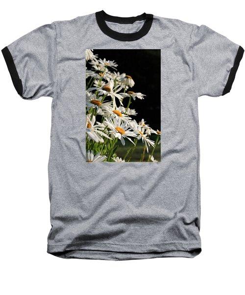 Daisies Baseball T-Shirt by Dorothy Cunningham