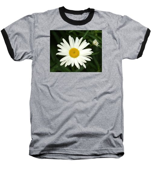 Baseball T-Shirt featuring the photograph Daisy Days by Carol Sweetwood