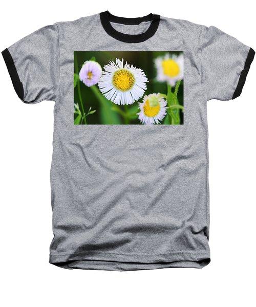 Daisy Fleabane Baseball T-Shirt