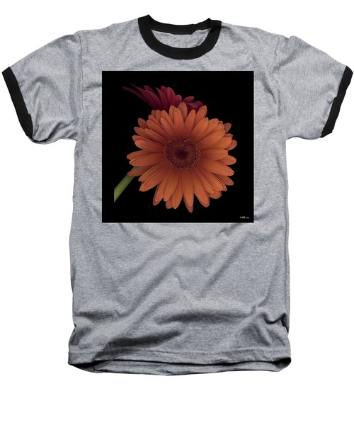 Daisy Tilt Baseball T-Shirt by Heather Kirk