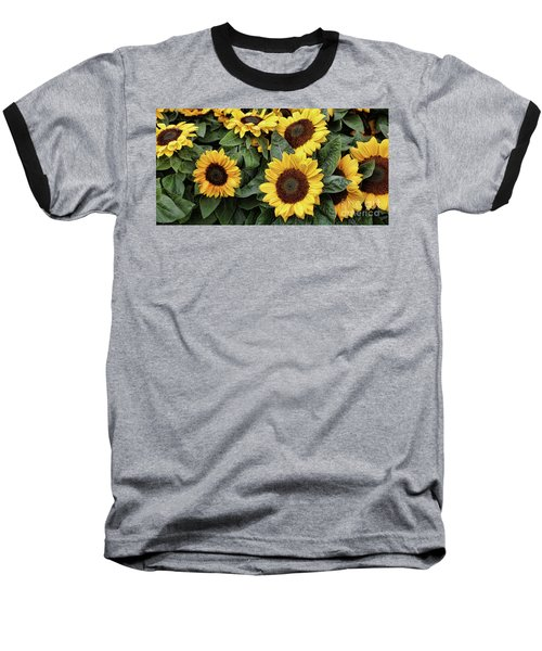 Daisy Yellow  Baseball T-Shirt