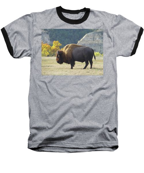 Dakota Badlands Majesty Baseball T-Shirt