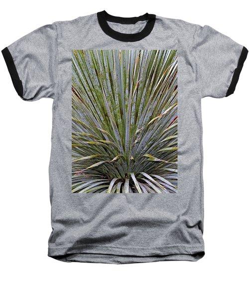 Dana Point Swords Baseball T-Shirt