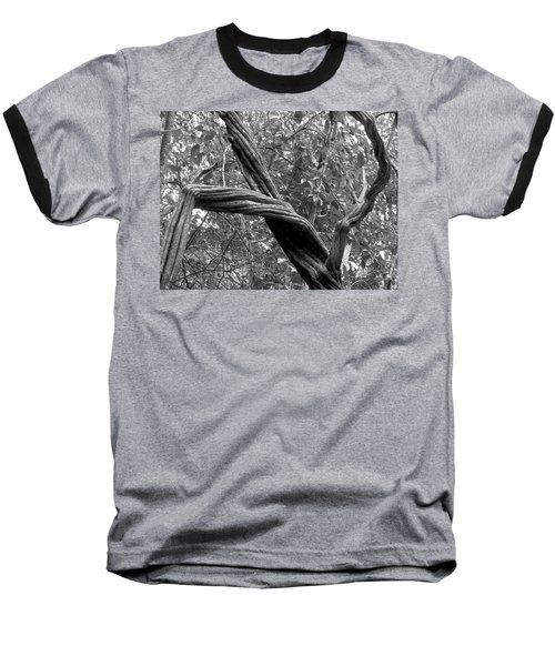 Dance Nature, Dance Baseball T-Shirt by Beto Machado
