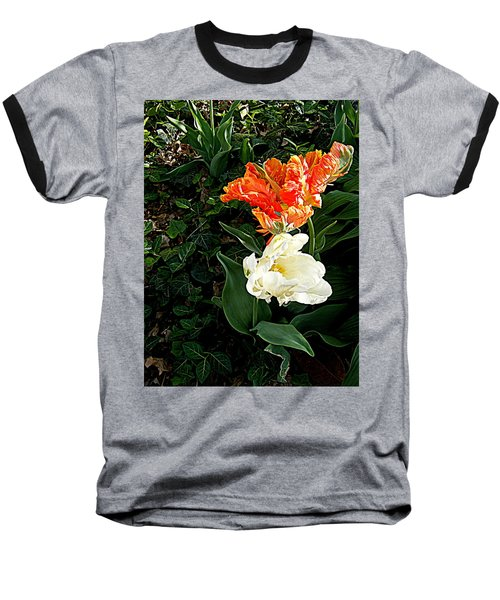 Baseball T-Shirt featuring the photograph Dancing With The Stars by Nancy Kane Chapman
