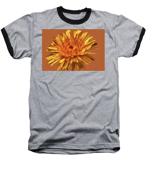 Dandelion Close #g3 Baseball T-Shirt