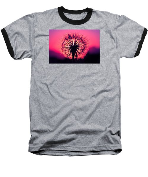 Dandelion Baseball T-Shirt by Paul Marto