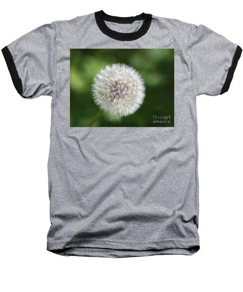 Dandelion - Poof Baseball T-Shirt by Susan Dimitrakopoulos