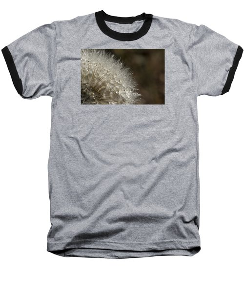 Dandelion Rain Baseball T-Shirt by Shelly Gunderson