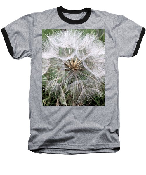 Dandelion Seed Head  Baseball T-Shirt by Kathy Spall