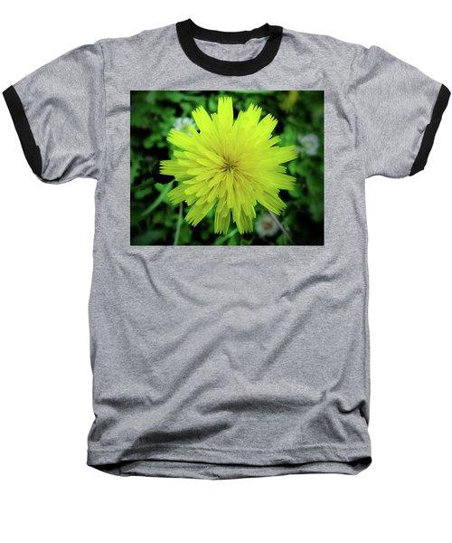 Dandelion Symmetry Baseball T-Shirt