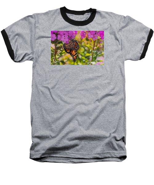 Dangling Monarch   Baseball T-Shirt by Yumi Johnson