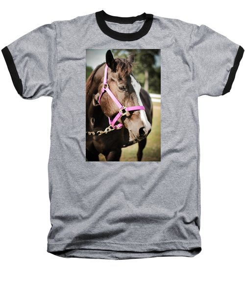 Dark Brown Horse In A Pink Bridle Baseball T-Shirt by Kelly Hazel