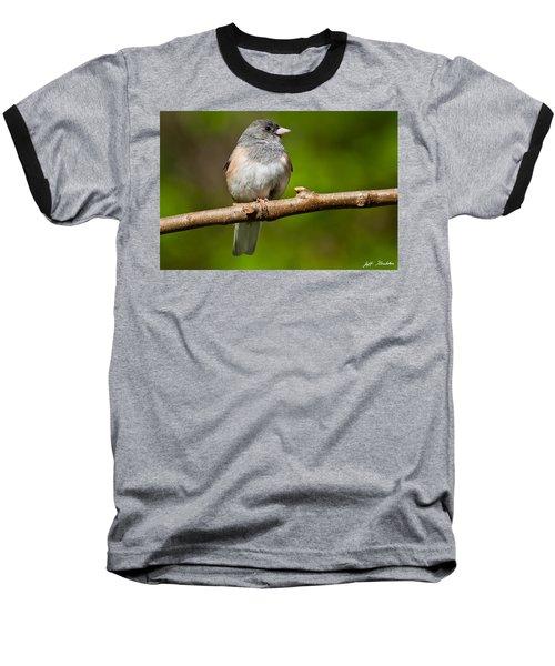 Dark Eyed Junco Perched On A Branch Baseball T-Shirt