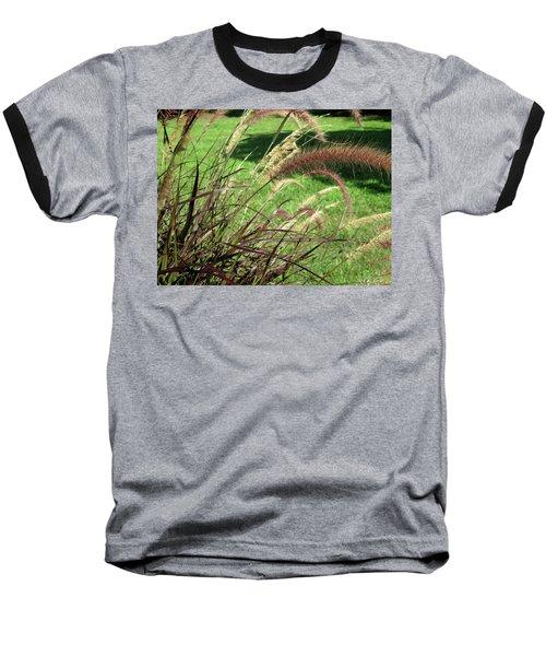 Dark Feather Grass Baseball T-Shirt by Michele Wilson