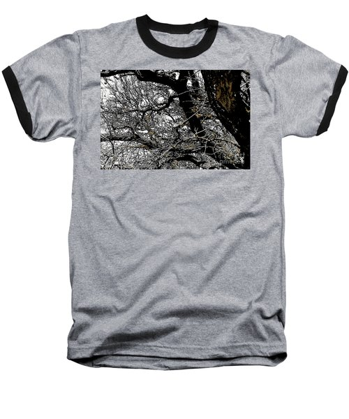 Dark Forest Baseball T-Shirt