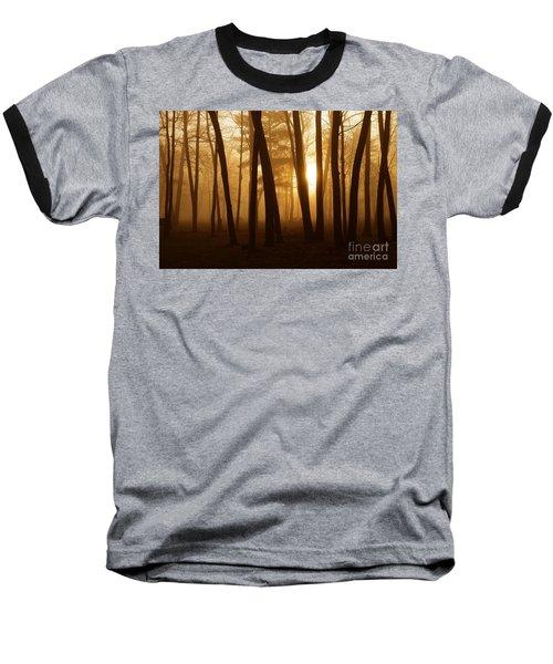 Dark Forest Baseball T-Shirt by Terri Gostola