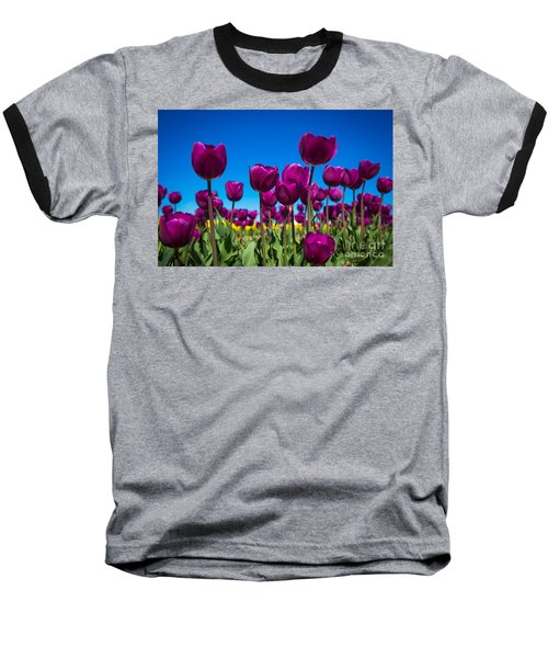 Dark Purple Tulips Baseball T-Shirt
