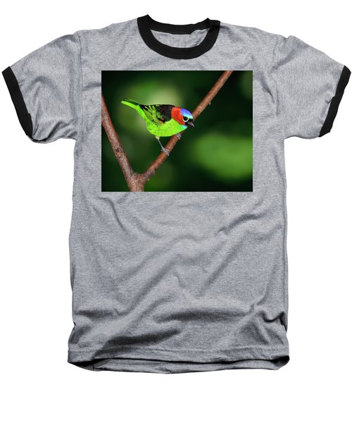 Dark To Light Baseball T-Shirt by Tony Beck